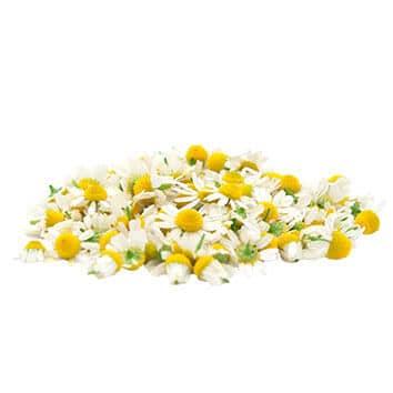 Chamomile flowers (Matricaria chamomílla)